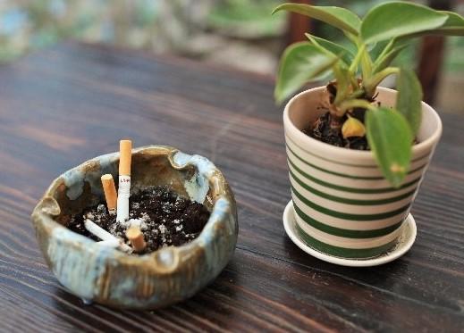 コーヒーでタバコのニオイを消臭